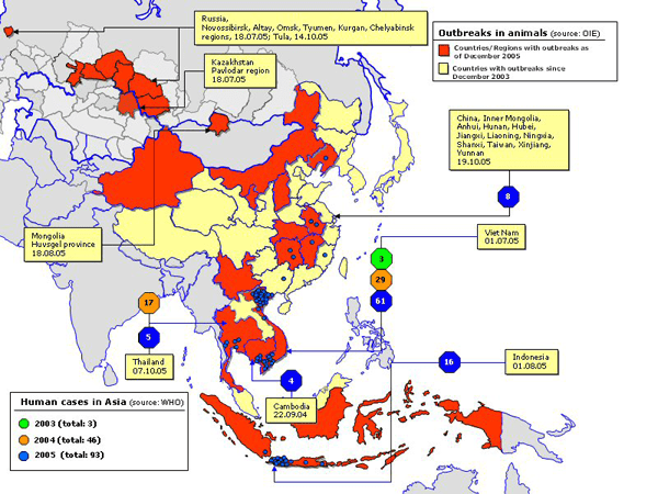 Map depicting the global spread of Avian Influenza through both animal and human populations (2003-2005).