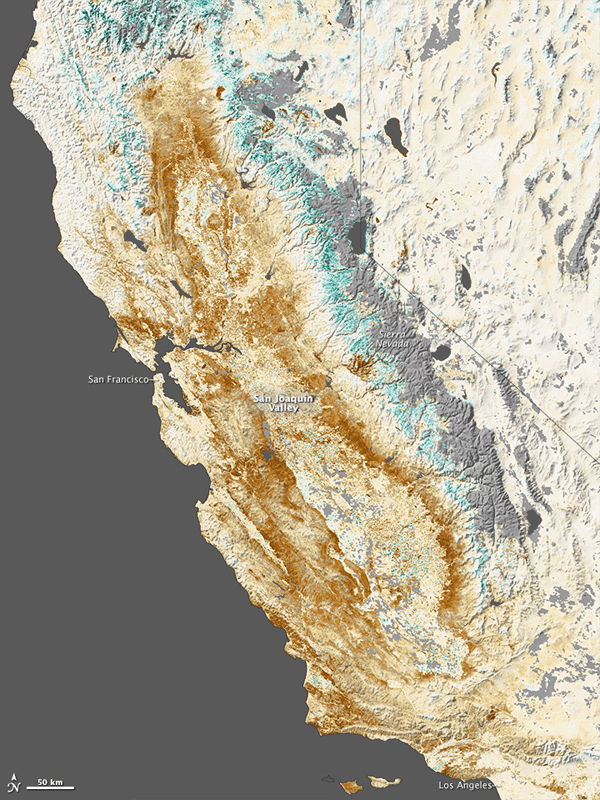 Map of vegetation anomaly in California. Source: NASA.
