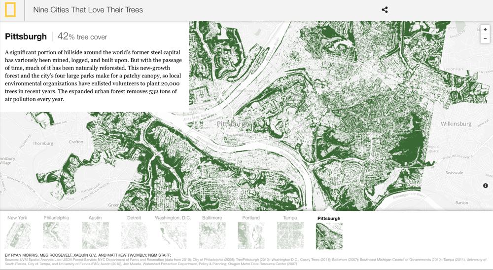 tree-canopy-maps  sc 1 st  Geolounge & Urban Tree Canopy Maps - GeoLounge: All Things Geography
