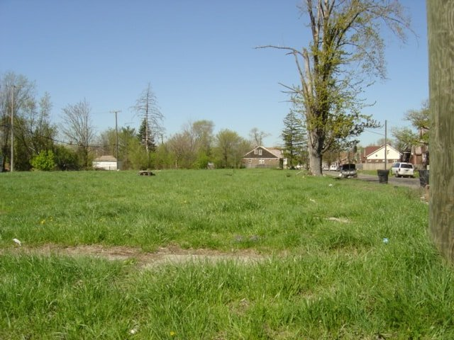 Lot in Detroit converted to an urban prairie.