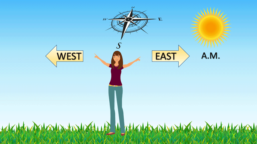 With your left hand pointing towards the sun (east) and your right pointing in the exact opposite direction (west), you can figure out where north and south are in the morning.