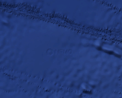 What uses see when zooming in on the spot where NEMO, the Oceanic Pole of Inaccessibility exists. Click on the image to see the location in Google Maps.