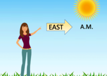 Understanding Direction Based on the Sun