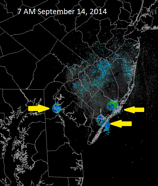 Yellow arrows indicate large flocks of birds taking off for the day.  Source: US National Weather Service Philadelphia/Mount Holly