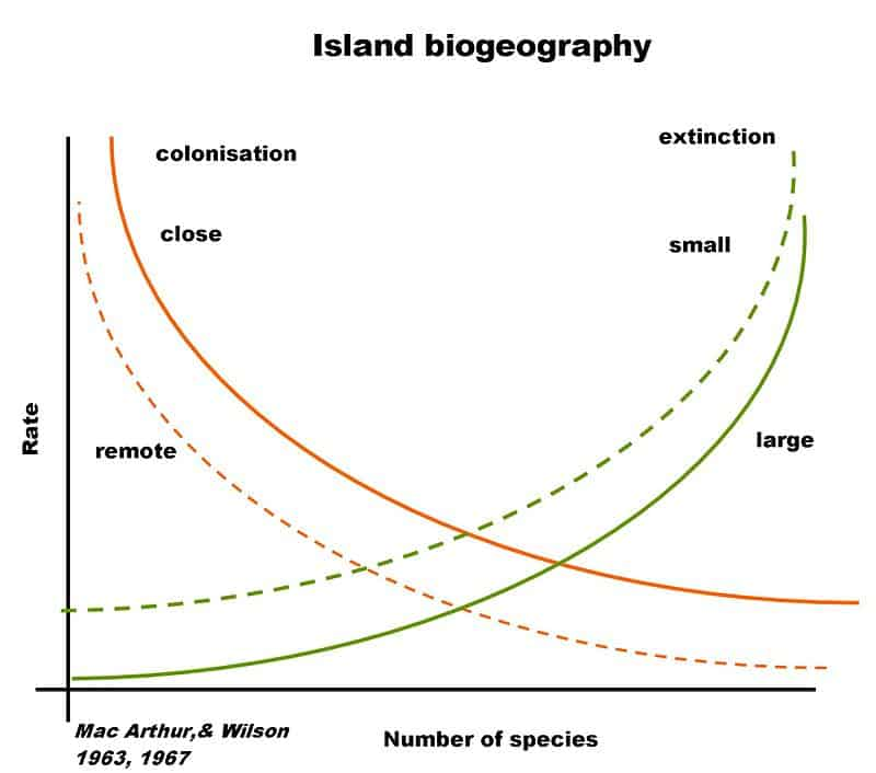 Theory of Island Biogeography illustrated in a graph. Graph: Wikipedia.