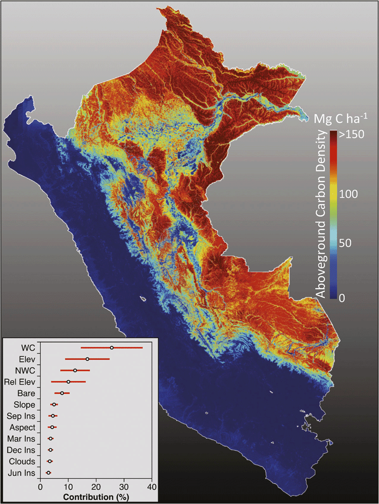Mapping Carbon in the Amazon