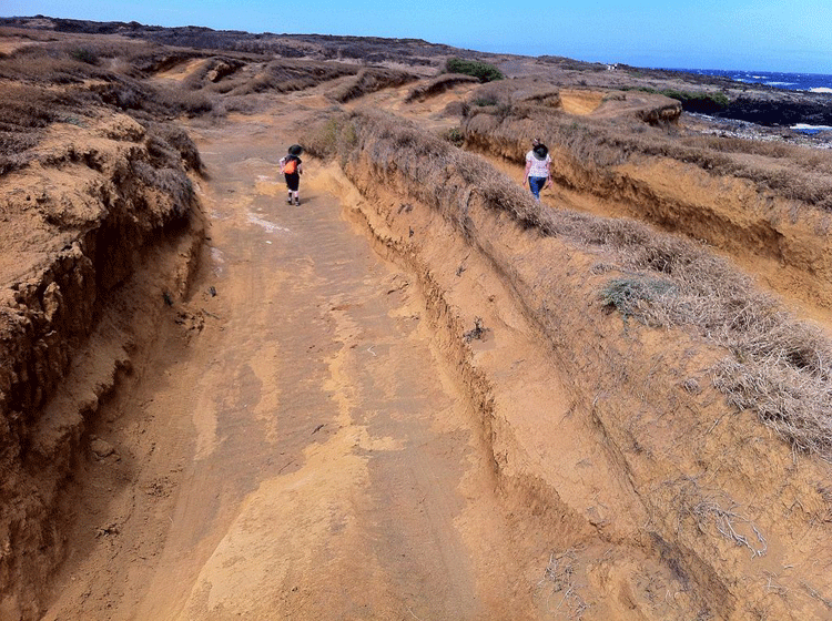Dunes in Hawaii eroded by wind.  Photo: Wiki Commons