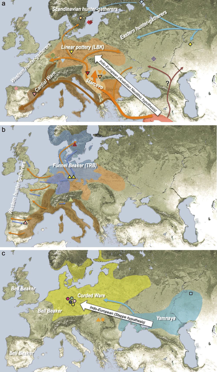 Geographic Spread of the Indo-European Language Family ...