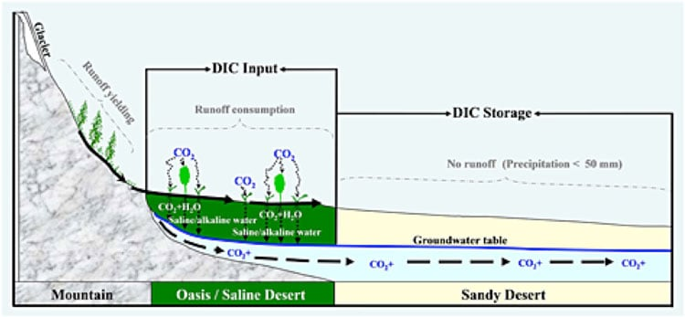 Schematic diagram of DIC (dissolved inorganic carbon) leaching and transport in a closed arid basin: Tarim Basin as an example. From Li et al, 2015.