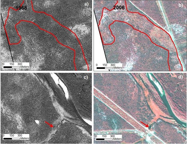 Comparison of land cover types between 1968 Corona and 2006 Quickbird images, showing changes caused by land use. The upper pair shows decreased vegetation cover along the power lines and roads. The lower pair of images indicates accumulation of water (d) in a drained lake basin (c) due to construction of the road resulting in water upstream being channeled into this location.