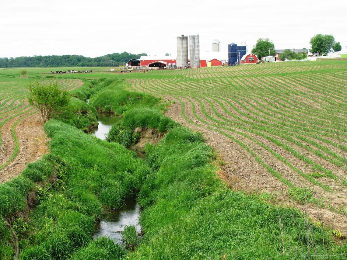 Midwest streams flow through intensive row cropping.  Photo: Peter Van Metre, USGS. Public domain.