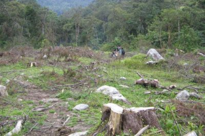 Deforestation near the Medellín River and Caldas, Antioquia, Colombia. Photo: medea_material, January 2008.