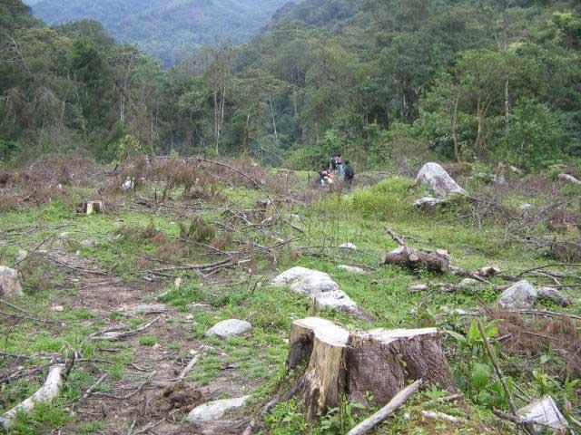 Deforestation near the Medellín River and Caldas, Antioquia, Colombia.  Photo: medea_material, January 2008.