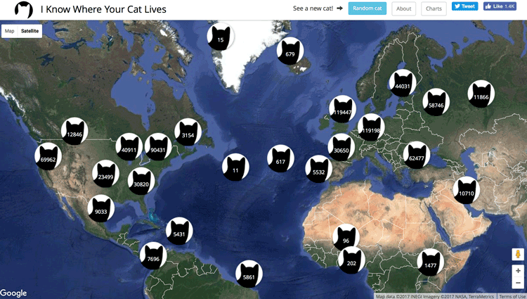 Cat Map Of The World.Using Geotagged Photos To Map Cats Geolounge All Things Geography