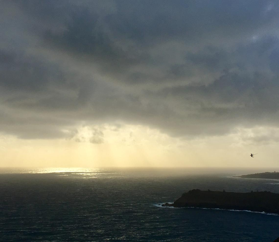 Weather at Kīlauea Point National Wildlife Refuge.  Jonathan Felis, Western Ecological Research Center. Public domain.