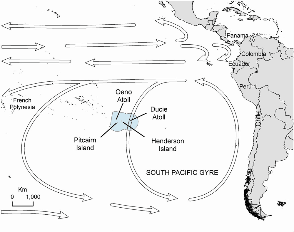 The location of Henderson Island near an ocean gyre has results in the rapid accumulation of marine debris along its beaches. Source: Lavers & Bond, 2018.