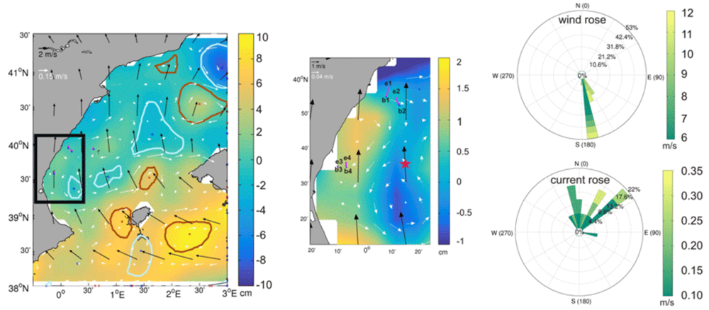 An example map showing a 6-hours snapshot (left panel) on 27 August 2012 of ADT (cm) from altimetry and the corresponding 6-hour mean wind field as obtained from CCMP between 03:00–09:00hours, together with several seabird tracks driven by the local wind. Figure: Sánchez-Román et al., 2019.