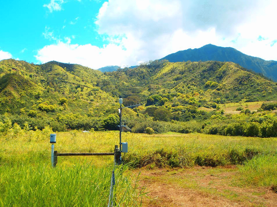 Waipā Garden tipping-bucket type rain gauge located in a grassy meadow about 300 yards inland from Hanalei Bay. Photo: Waipā Foundation, August 2014