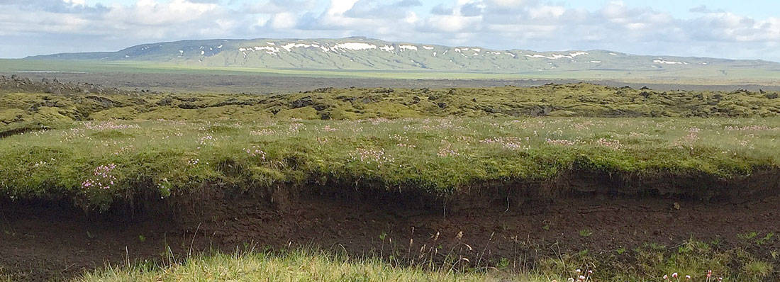 Iceland's landscape is mostly devoid of the tall vegetation. View near Katla volcano in Iceland. Photo: Jo Schmith. Public domain via USGS.
