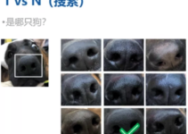 Tracking Lost Dogs with Their Nose Prints