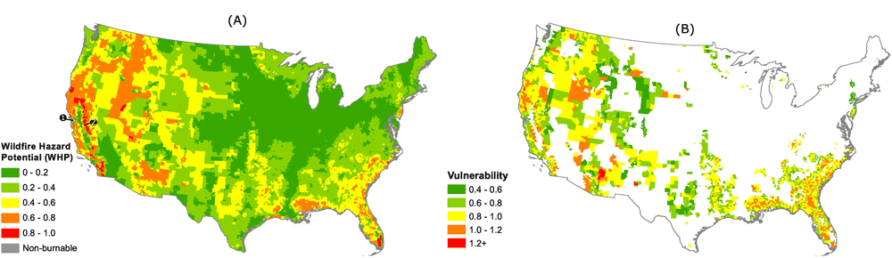 A) Average WHP scores for census tracts in the continental U.S. (n = 71,901). The relative magnitude shifts when researchers considerered the social and economic characteristics of census tracts in their vulnerability to wildfire (B). Only those census tracts with a moderate to very high WHP score are represented in (n = 6,304). In 2A, the San Francisco Bay Area suburbs and eastern Sierra Nevada Mountain communities are labeled as 1 and 2, respectively.