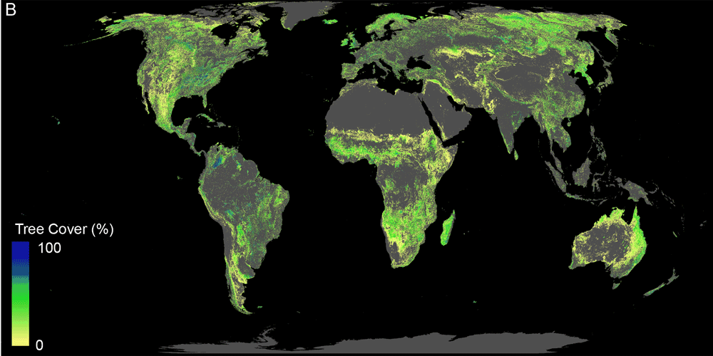 Map showing tree cover potential for areas where new forest growth can occur (removing existing forest areas, agricultural and urban land cover).  This potential area for new tree growth represents  0.9 billion hectares.  Source: Bastin et al., 2019.
