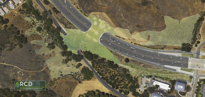 Conceptual map designed by the RCD to show the eventual wildlife crossing in Agoura Hills over the 101 freeway.
