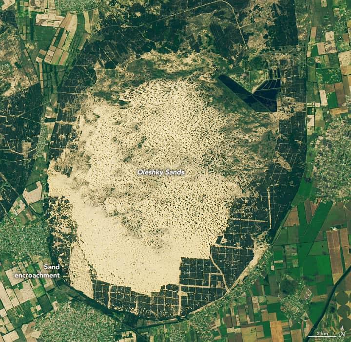 Landsat 8 captured this satellite image of Oleshky Sands in Ukraine on June 15, 2019. Source: NASA