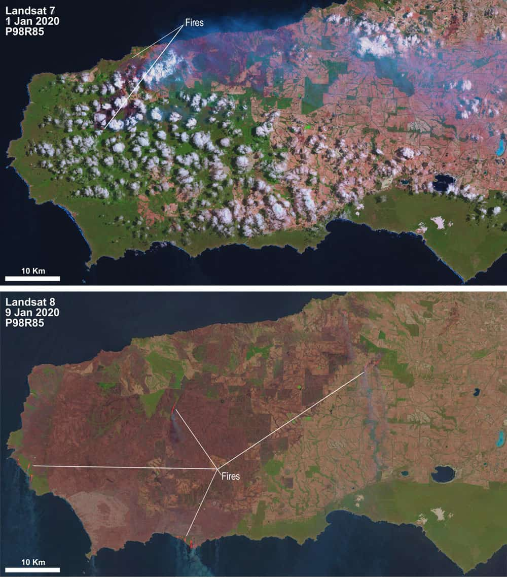 Satellite imagery shows how devastating the bushfires have been on Kangaroo Island. Source: USGS