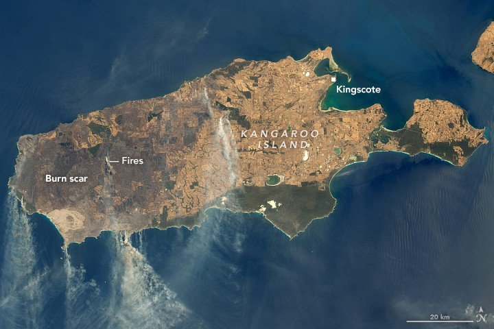 Landsat 8 imagery of Kangaroo Island showing damage from wildfires. Acquirered January 9, 2020.