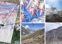 Plant Life is Expanding in the Area around Mount Everest