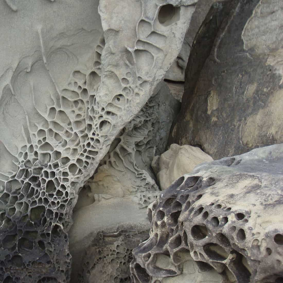 Honeycomb weathering of sandstone located on the shores of Puget Sound.  Photo: Collin Smith , U.S. Geological Survey. Public domain.