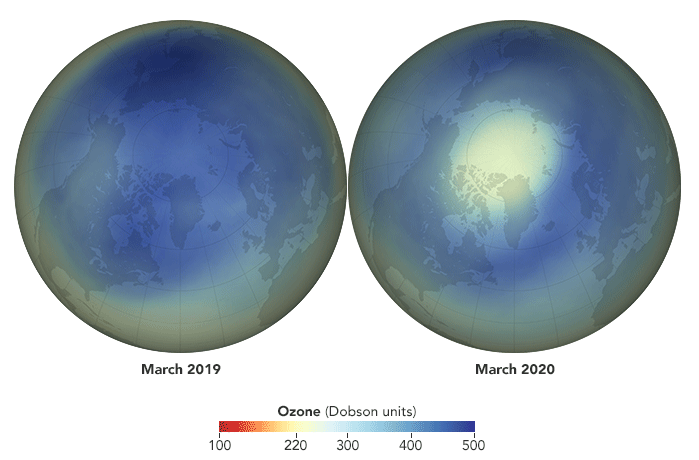 Maps showing average concentrations of ozone over the Arctic in March 2019 (a typical year) and March 2020, as calculated by the NASA Ozone Watch team. Source: NASA.