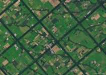 A View of Hokkaido's Lattice Windbreaks From Space