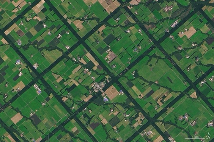 Dark green lines form the forested windbreaks in Hokkaido, Japan. Image: NASA.