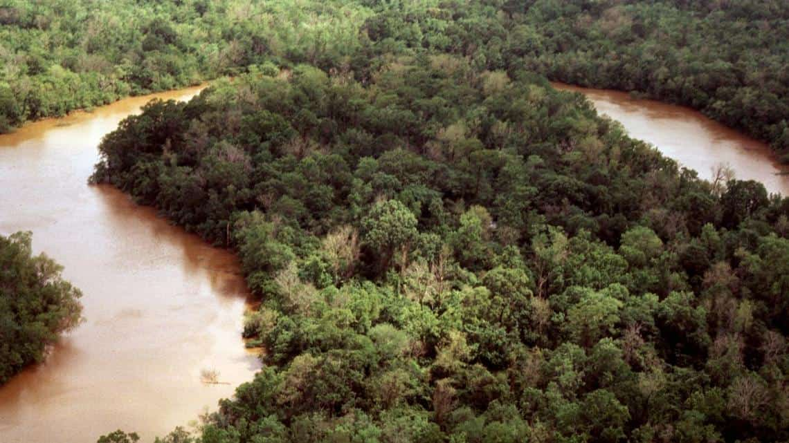 An oxbow of the Neches River in Big Thicket National Preserve just upstream of Beaumont, TX. Photo: National Park Service, public domain.