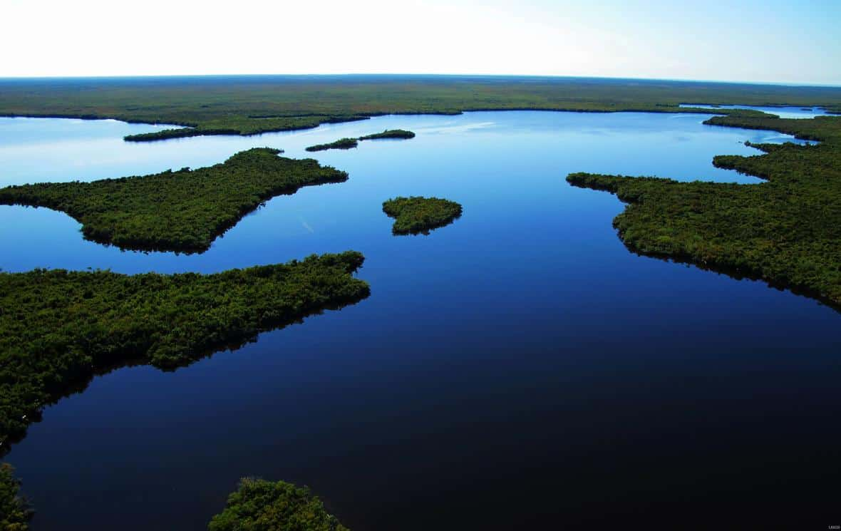 The color of water is a by product of how light is absorbed. Mangrove islands bespeckle the bay in upper Lostman's River. Photo: Paul Nelson, U.S. Geological Survey. Public domain.