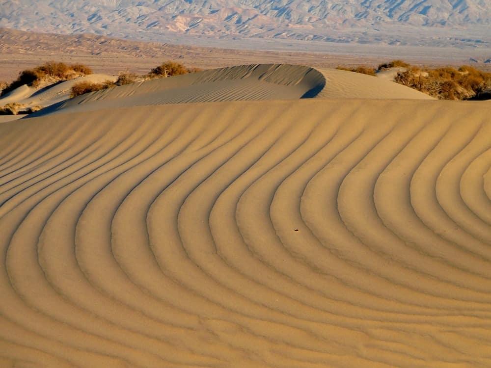 Mesquite Flat Sand Dunes.  Photo: Death Valley NPS.