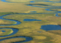 How Oxbow Lakes Form