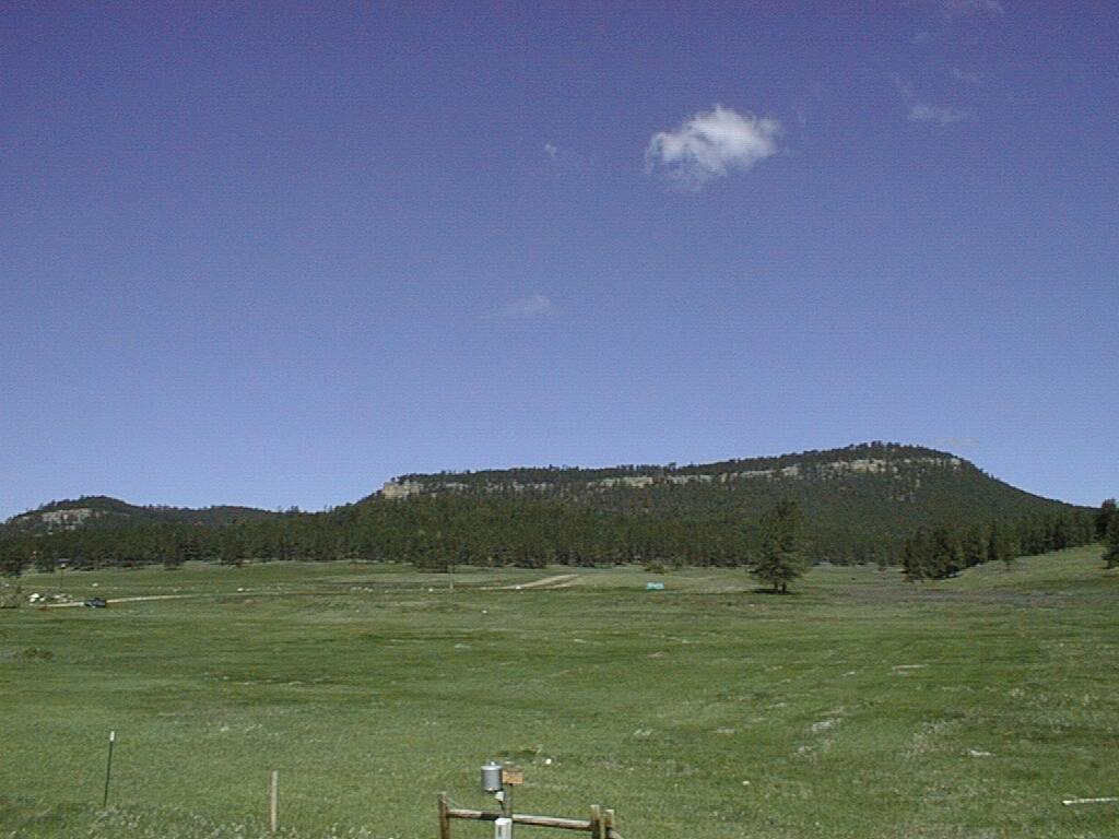 Limestone Plateau near Custer, South Dakota.